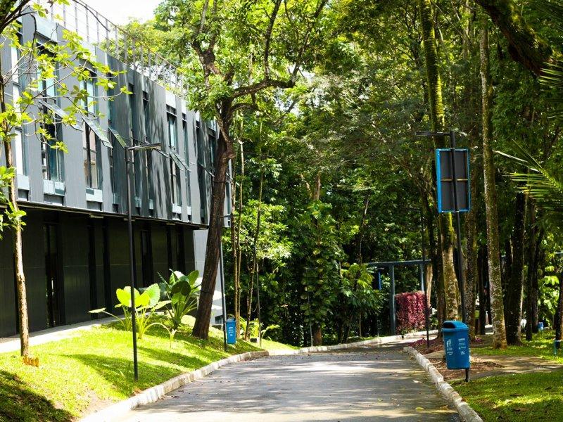 Sheila Varela: Jardim Botânico proporciona reconexão com a natureza