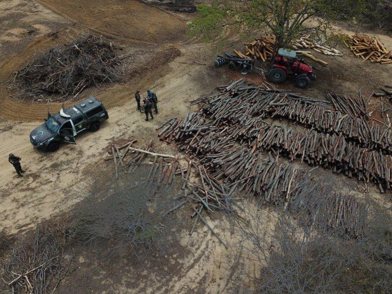 II Fase de operação do Inema combate o desmatamento ilegal no interior baiano